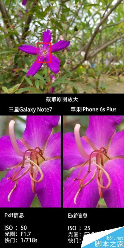 三星Note7国行版、iPhone6S Plus拍照性能区别